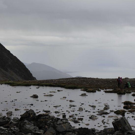 Cerro del medio, Ushuaia. Verano 2016.